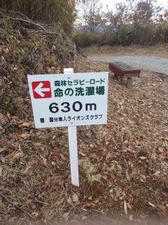 PA0_0381.JPG